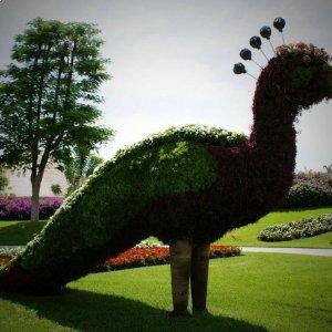 Cuando vengas al Festival del Globo, te podrás dar un paseo por los Jardines de México..