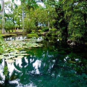 El balneario Santa Isabel cuenta con nacimiento natural de agua, con arroyos y pozas de aguas cristalinas..